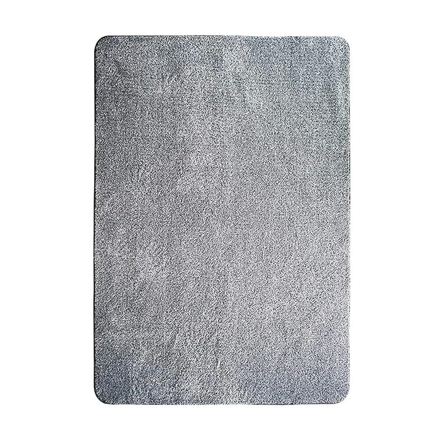 政策申込みクライマックスエリアラグ、ヘアリーハイパイル厚く長い髪モダン北ヨーロッパリビングルームベッドルーム出窓ウィンドウ毛布ベッド毛布 (Color : Gray, Size : 90cm×200cm)