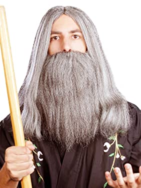 Enigma Wigs Men's Wizard