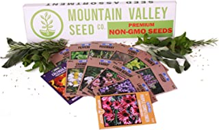 Medicinal & Herbal Tea Garden Seed Collection | Deluxe Assortment | 12 Non-GMO Herb Seed Packets: Sage, Rosemary, Fennel, Lemon Balm, Hyssop, Peppermint, More