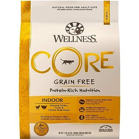 Wellness CORE Grain-Free Dry Cat Food