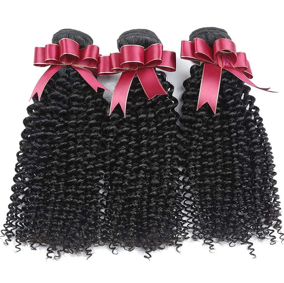 ブラジルの変態巻き毛の束女性130%密度ブラジルの毛1束ブラジルの人間の毛髪の束巻き毛