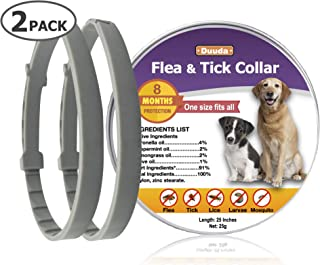 Best petlock for dogs Reviews