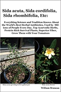 Sida acuta, Sida cordifolia, Sida rhombifolia, Etc.: Everything Science and Tradition Knows about the World's Best Herbal Antibiotics, Used by ... Superior Fiber, Grow Them with Your Tomatoes