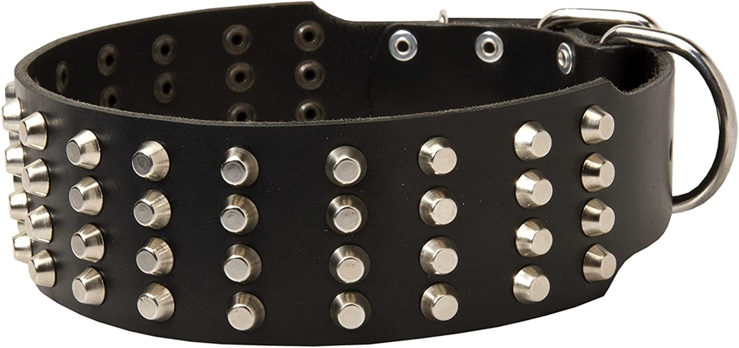 """22 inch Studded Tan Leather Dog Collar  """"Studded Gift""""  2 2 5 inch Wide"""