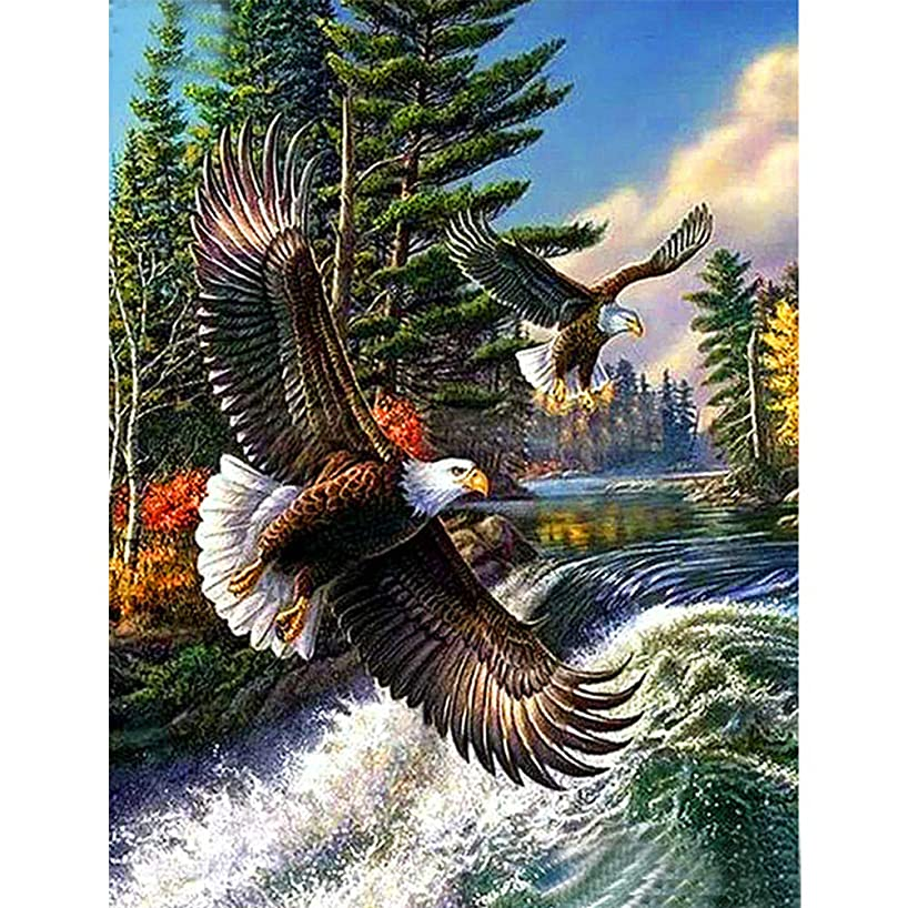 UPMALL DIY 5D Diamond Painting by Number Kits, Full Drill Crystal Rhinestone Embroidery Pictures Arts Craft for Home Wall DecorationTwo Eagles 11.8×15.7 Inches