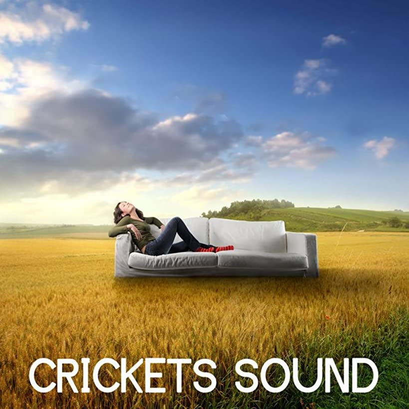 Crikets Sound and Nature Sound: Nature Music and Sound of Nature for Relaxation and Meditation