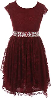 Short Sleeve Floral Lace Ruffles Holiday Party Flower Girl Dress