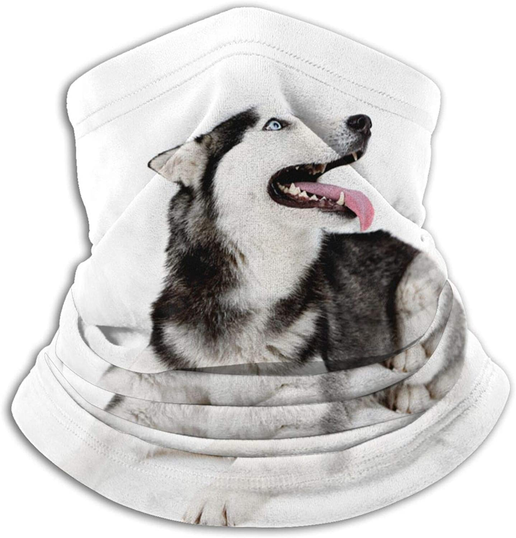 Winter Neck Gaiter Warmer Soft Face Mask Scarf Siberian Husky Outdoor Sports Neck Warmer Headwear for Men Women Black