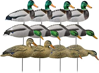 Best duck shell decoys Reviews