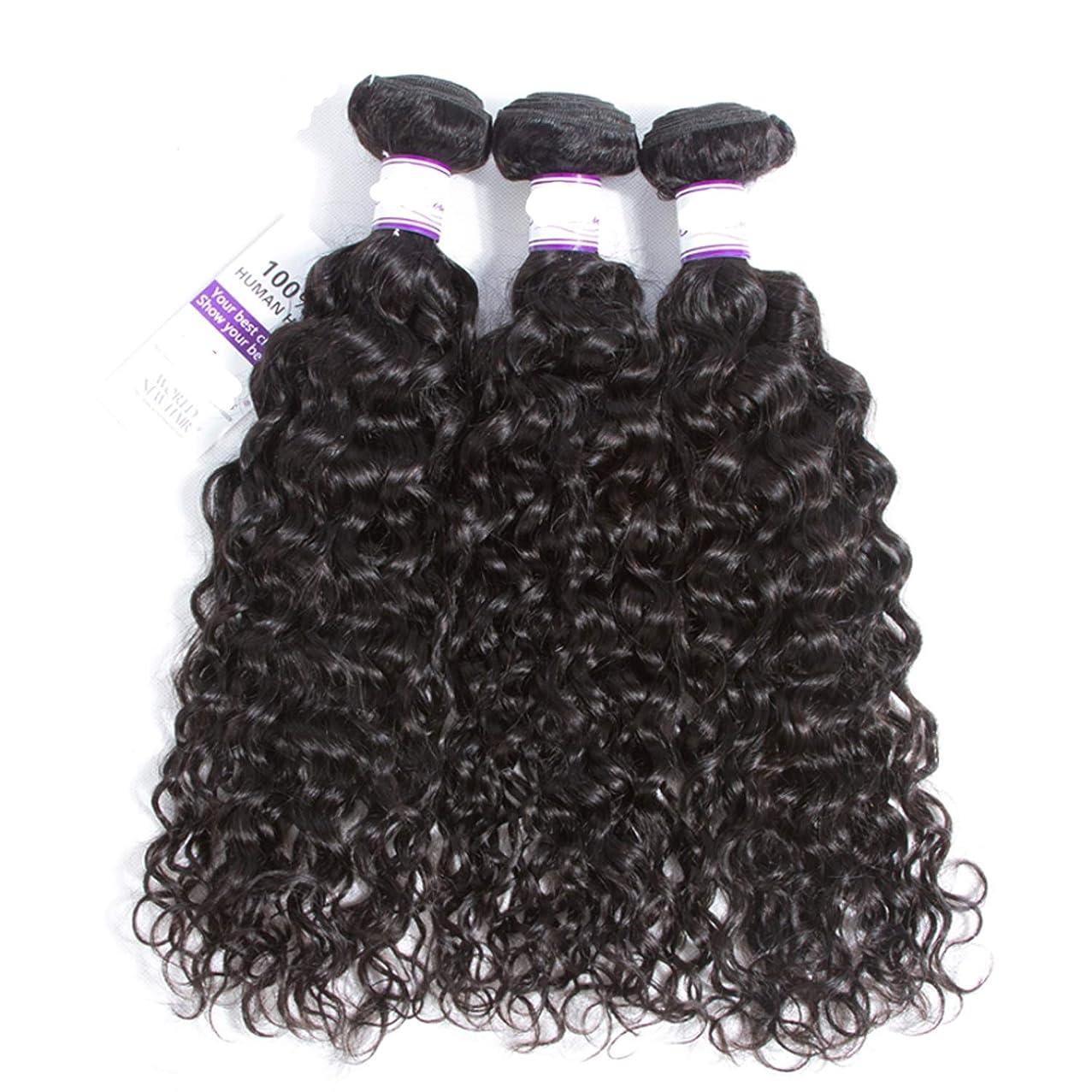 隙間販売員具体的にインドの水波実体髪3バンドル髪織り100%人間のremy髪横糸8-28インチ体毛延長 かつら (Length : 14 16 18)