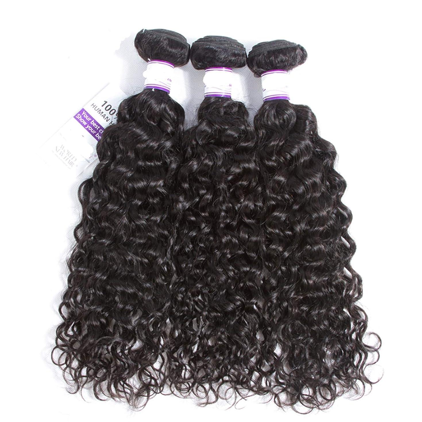 実業家ウールベアリングサークルインドの水波実体髪3バンドル髪織り100%人間のremy髪横糸8-28インチ体毛延長 かつら (Length : 14 16 18)