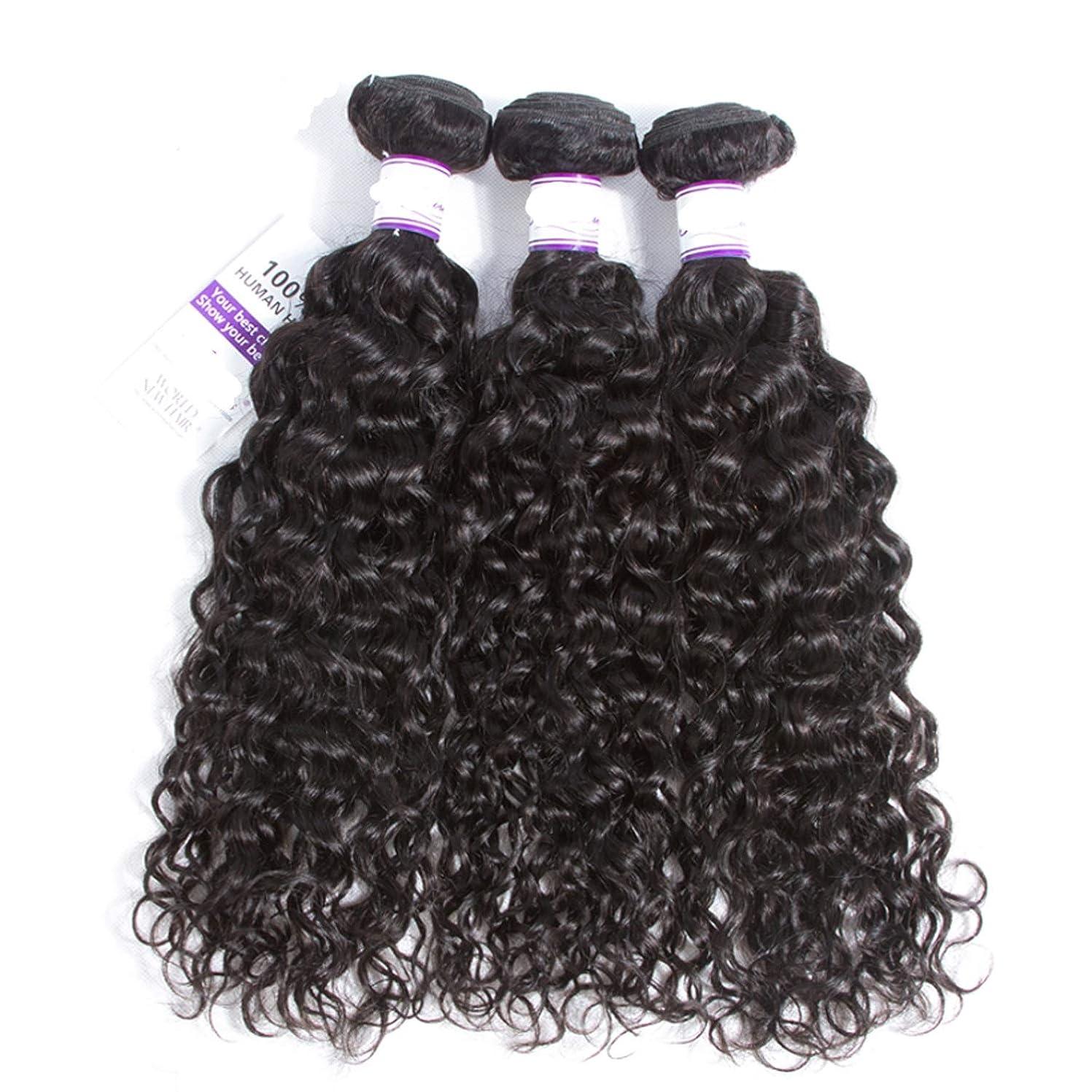 獣期限小数インドの水波実体髪3バンドル髪織り100%人間のremy髪横糸8-28インチ体毛延長 (Length : 12 14 16)