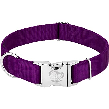 Premium Nylon Dog Collar with Metal Buckle Country Brook Petz Vibrant 25 Color Selection