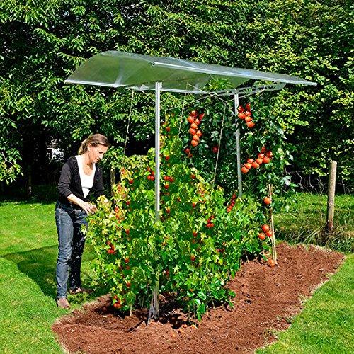 Gärtner Pötschke Palram Tomatendach Tommy inkl. Rahmen und Bodenanker, verlängerbar