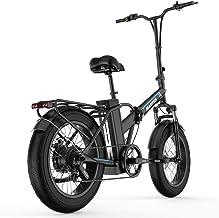 "E-Bike 20""* 4"" Vetbanden met 48V 15 Ah Lithium Ion Accu 750W Motor City Mountainbike Versterker 100-120KM"