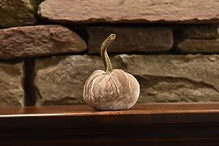 Best cream velvet pumpkins Reviews