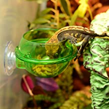 EONMIR Suction Cup Feeder, Reptiles Ledge Accessories Supplies for Gecko, Chameleon