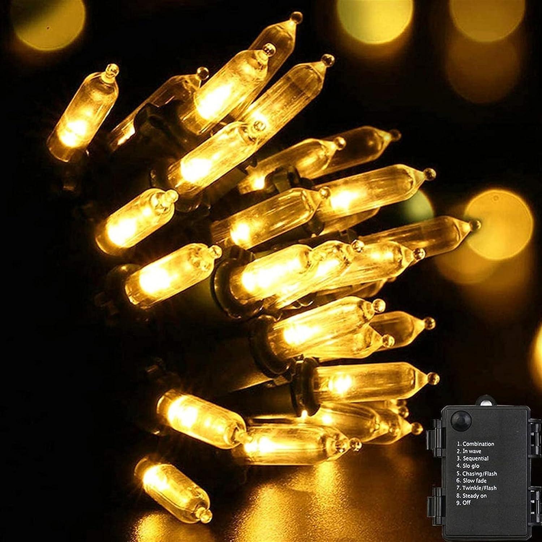 LCCDSD Outside Fashionable Charlotte Mall Lights Fairy String Ligh LED 50 100