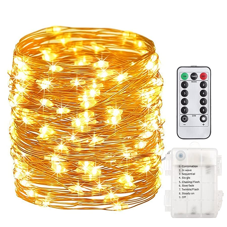 トライアスロン冗長ゲートWLWJ イルミネーションライト led イルミネーション 電池式 クリスマス 飾りライト 10M100LED (虹色)