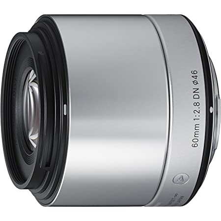 Sigma 60mm F2.8 EX DN Art (Silver) for Sony SE