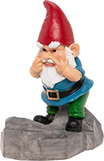 Best inappropriate garden gnomes Reviews