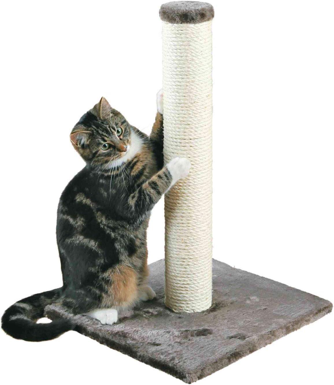 arbol rascador pequeño para gato