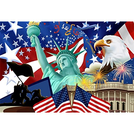 HUAYI 8X8ft Independence Day Backdrop for 4th of July Wooden Photo Booth Backdrop American Flag Photography Background Photocall Studio Props Memorial Patriotic National Holiday Banner Decor W-2002