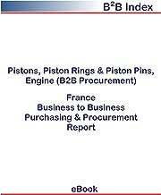 Pistons, Piston Rings & Piston Pins, Engine (B2B Procurement) in France: B2B Purchasing + Procurement Values