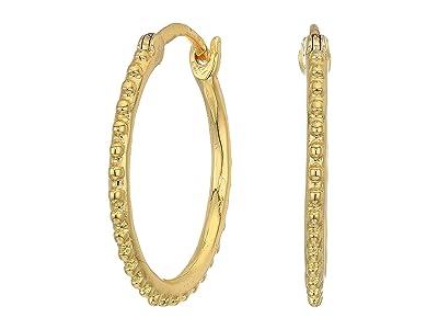 gorjana Bali Small Hoop Earrings (Gold) Earring
