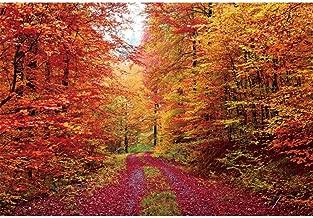 Renaiss 7x5ft Vinyl Autumn Scenery Backdrop Gorgeous Autumn Forest Deciduous Mountain Natural Landscape Photo Background Red Maple Trees Fall Leaves Portrait Photography Studio Props