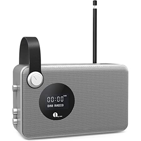 1byone Dab Radio Mit Wireless Lautsprecher Kabellos Elektronik