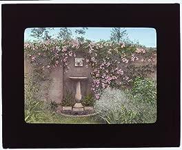 Historic Photos 1914 Photo Gray Gardens, Robert Carmer Hill house, Lily Pond Lane, East Hampton, New York. Birdbath Location: East Hampton, New York