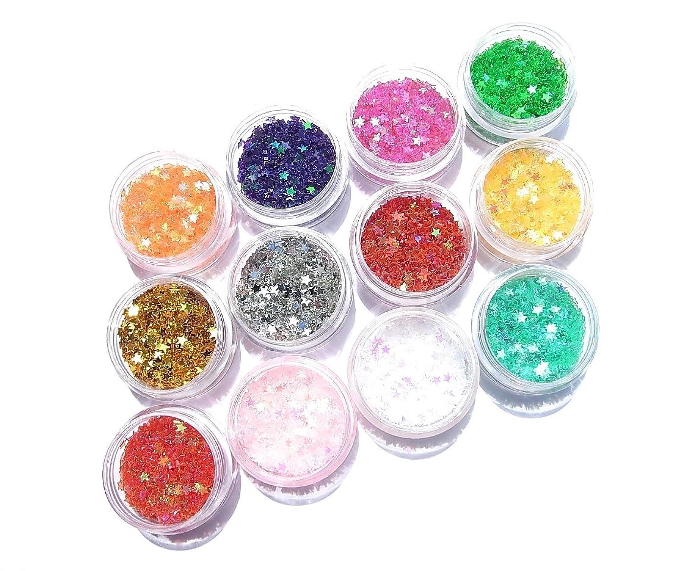 番号成熟した水っぽい【jewel】厳選12色 2.5mm スター 星ホログラム 各色2g入り ジェル ネイル