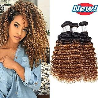 BCQueen Brazilian Ombre Deep Wave Virgin Hair 4 Bundles Wet and Wavy Ombre Brazilian Deep Curly Hair Bundles Human Hair Extensions Two Tone Color T1B/30(12121212)