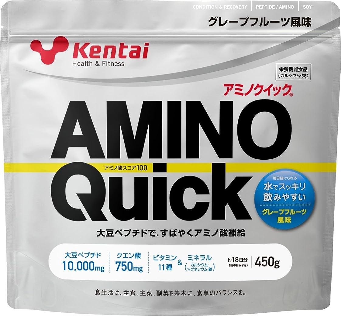 バブル物質職人Kentai アミノクイック グレープフルーツ 450g