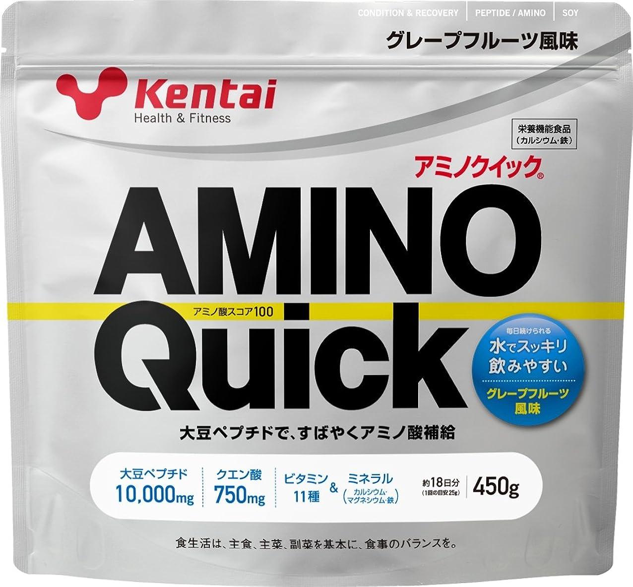 哀れな蒸留する輸血Kentai アミノクイック グレープフルーツ 450g