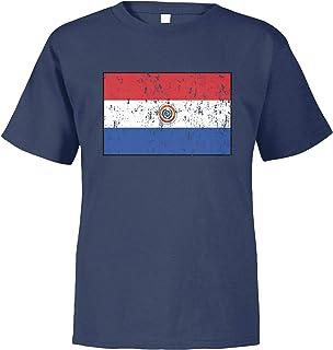 Amdesco Paraguay Flag Paraguayan Toddler T-Shirt