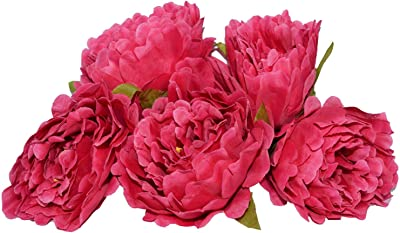 Fourwalls Artificial Decorations Loose Peony Flower Heads and Flower (Dark Pink, Pack of 6)