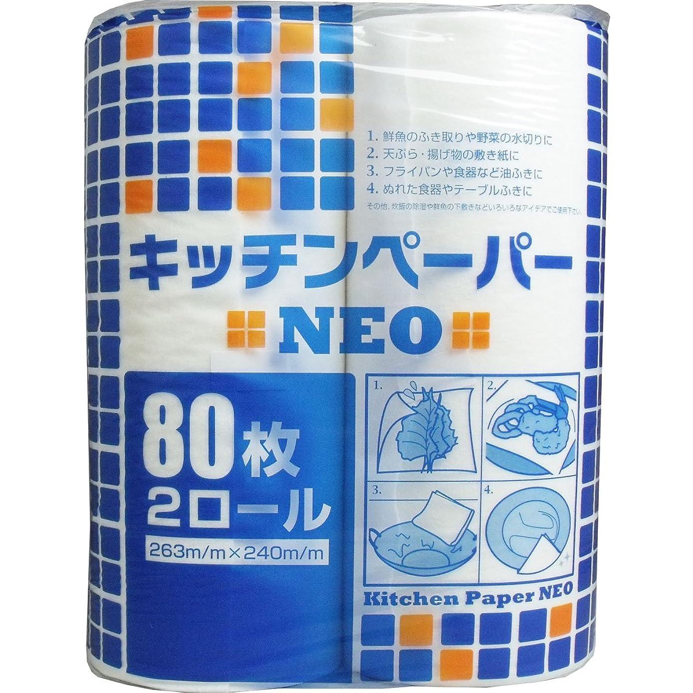 マウス任意司書キッチンペーパー NEO 80枚×2ロール入