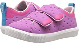 Peace Purple Coated/Hollywood Pink/Shell White