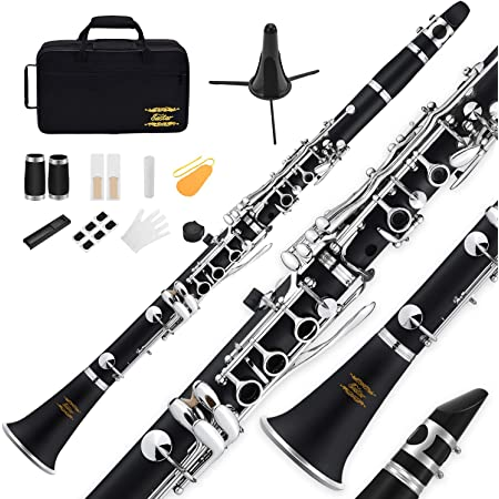 Eastar B Flat Clarinet, Student Clarinet for Beginner, Ebonite Bb Clarinet with 2 Barrels, 3 Reeds, 2 Mouthpiece Connectors, Hard Case, Cloth, Stand and More, Nickel-plated Keys, ECL-300, Black