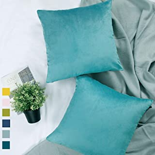 YINFUNG Aqua Velvet Pillow Covers 18x18 Cyan Pillow Covers Turquoise Set of 2 Mint Throw Pillow Covers Soft Couch Accent Pillow Cover Sofa Pillow Cases Living Room 2 Pack Aquamarine Bright Colored
