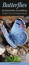 Best common butterflies in california Reviews
