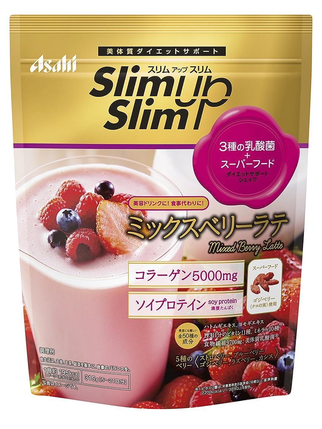 満足チョークキウイスリムアップスリム 乳酸菌+スーパーフードシェイク ミックスベリーラテ 315g