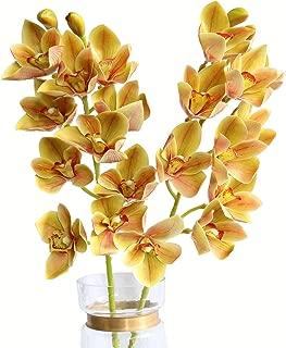 Htmeing 2pcs 10 Heads Artificial Cymbidium Orchids Flowers Plant Branches Stems for Wedding Centerpieces Floral Arrangement (Champagne)