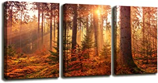 Youshion Art-Canvas Prints 3 Panels Framed Ready to Hang  Morning Woods Big Tree Landscape Contemporary Picture Modern Landscape Canvas Wall Art , Oil Painting Print Wall Decoration