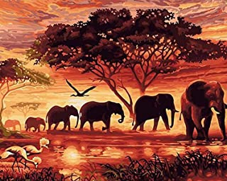 Paint by Numbers-DIY Digital Canvas Oil Painting Adults Kids Paint by Number Kits Home Decorations-Sunset Elephants 16 * 2...