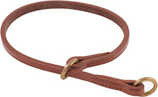 Alvalley Flat Slip Collar for Dogs Thickness 3/16 in x Large 16 in