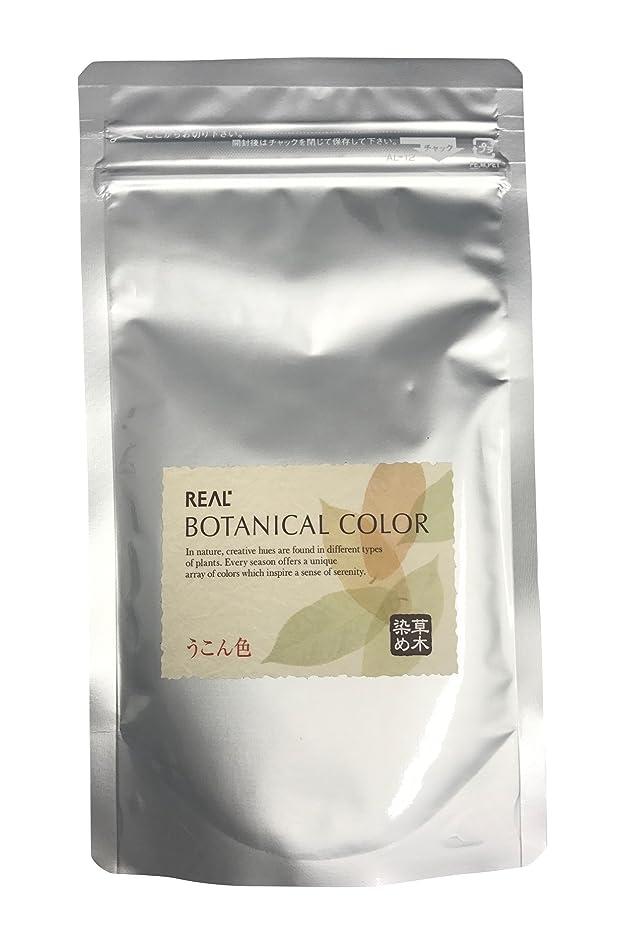 銅古代放棄するリアル化学 ボタニカルカラー うこん色 100g