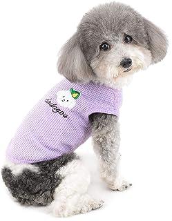 Amazon.es: pijama para perros